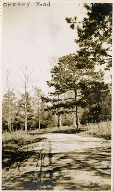 Photograph of Cherry Road in the early 1910s near where Richardson Hall and Wofford Hall are currently located .