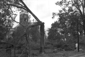 Hurricane Hugo Damage - September 1989